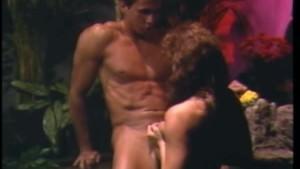 Ashlyn Gere And Peter North (Swedish Erotica #86)